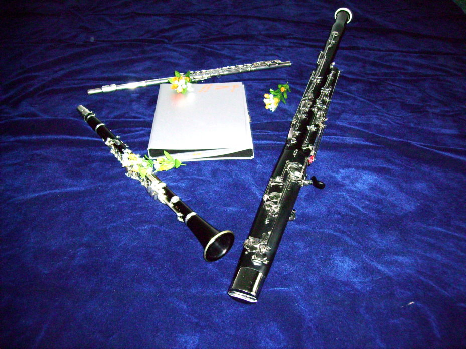 Picture of flute, clarinet and bassoon